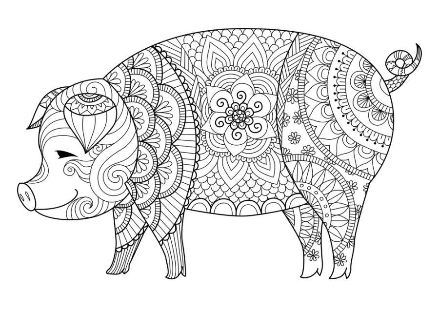 Коллекция новогодних раскрасок со свинками 2019
