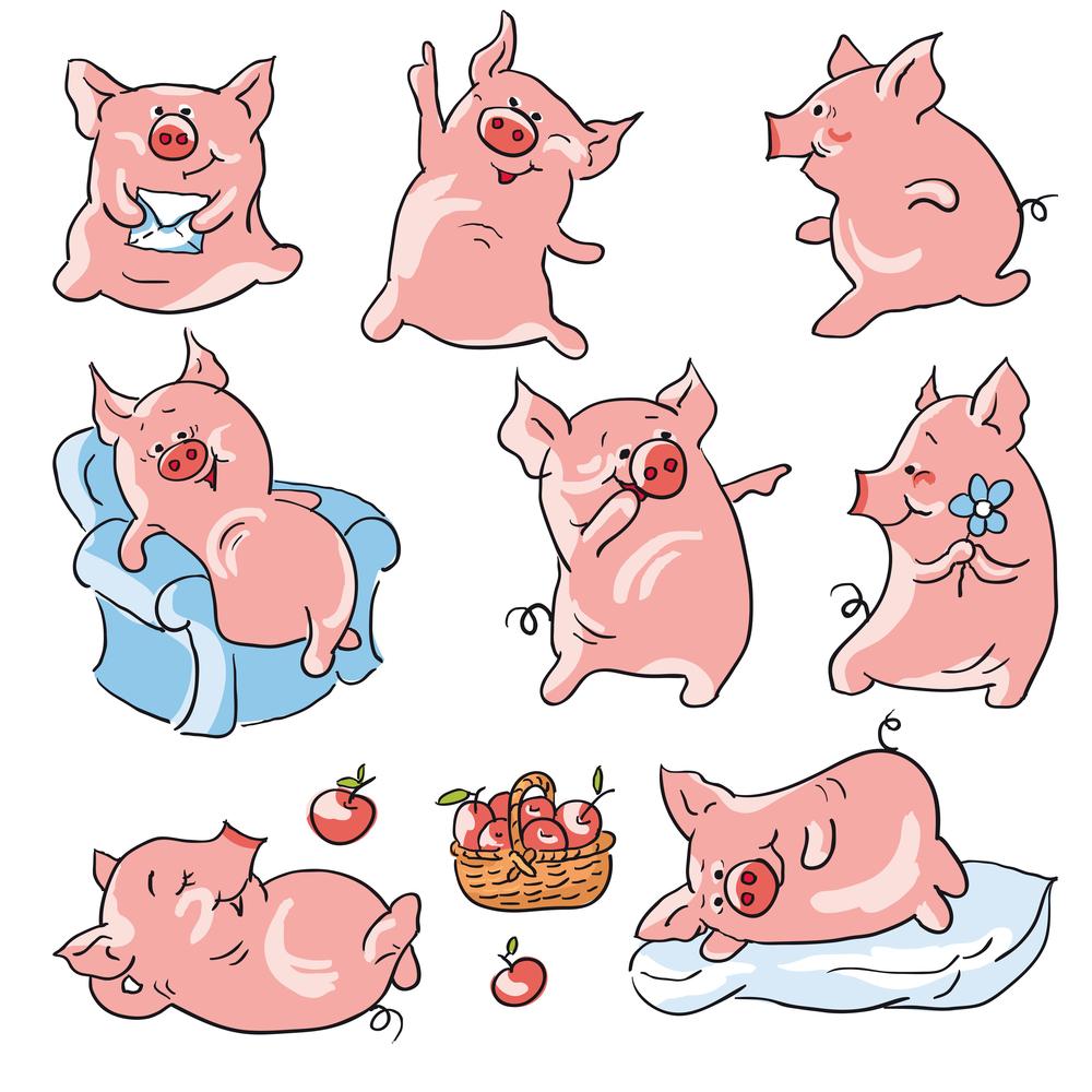 В чем встретить 2019 Год Свиньи