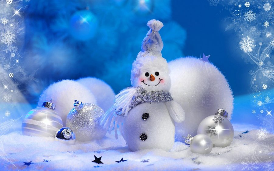 Когда отмечают Всемирный День снега