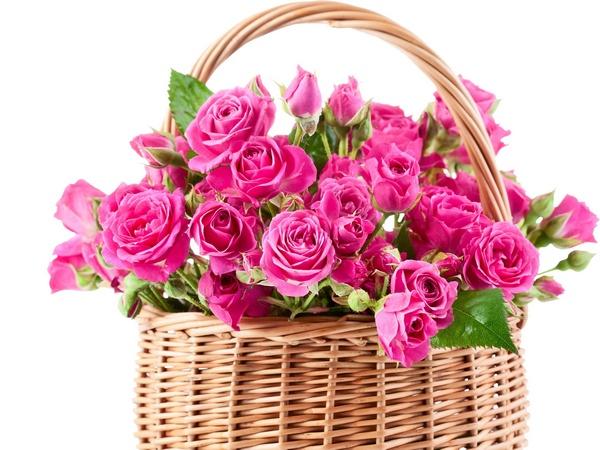 Цветочные композиции в корзине. Фото с сайта www.anypics.ru